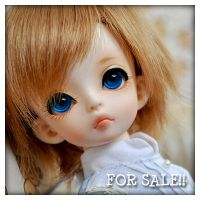 FOR SALE SOOM MD SILT HUMAN by fransyung