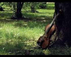Lost violin 2 by ankkutza