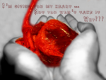 Giving you my HeArT by Smiling-HeArT