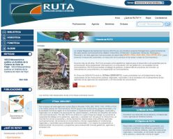 RUTA. Secondary by InterGraphicDESIGNS