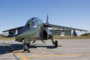 Alpha Jet 148 - Front by altitude604