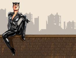 Catwoman by Tolomuco