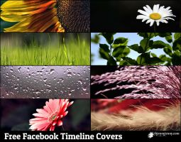 Free Facebook Timeline covers by ibjennyjenny