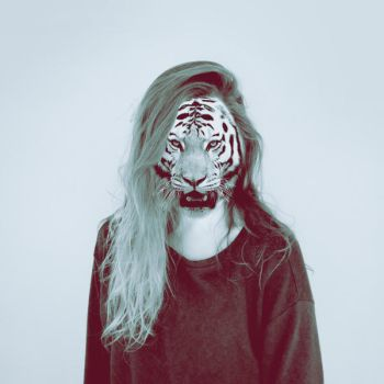 Tiger by Laura1995