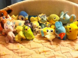 Pokemon Plush Collection by xXBleedingInsanityXx