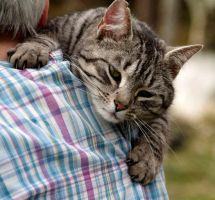 """""""Cat"""" loves a cuddle by piglet365"""