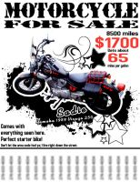 Sadie for Sale: Motorcycle Ad by rachelthegreat