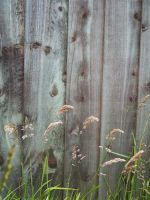 Fence 2 by pendlestock