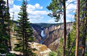 Lower Falls Yellowstone by Rourke-1