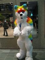 Rainbow Furry by sweetdreamkiss