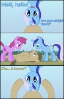 Doctor Whooves ATS Part 5 by CaptainBritish