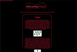 Networking Website by Wallbanger6