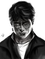 it all ends here-Harry Potter by DeaDKarasu