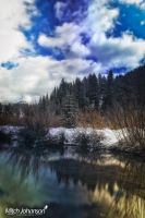 Blurred Winter by mjohanson