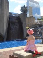 kitty at the fountains by parrots4life