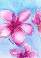 ACEO - Watercolor Flowers 004 by strryeyedreamr27