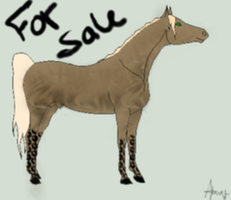 For Sale 1 SOLD by angry-horse-for-life