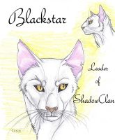 Blackstar Faces by MudstarMord-Sith
