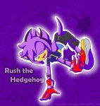 CP 2nd Place-Rush the Hedgehog by Fantailed-Hedgehog