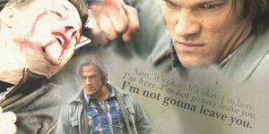 Supernatural - Swan Song 2 by LittleGreenleaf