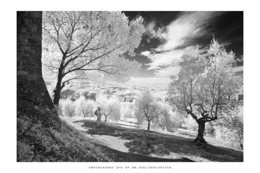 Tuscany IR - V by DimensionSeven