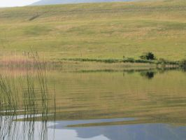 Pond 05 by Eltear-Stock
