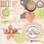 Tina Shaw - Scrap Matters 06-2013 Colour Challenge by bizkid1