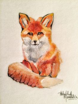Fox ~ Watercolour and Felt by abbeygoescrayons