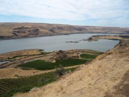 Columbia River Gorge 10 by rifka1