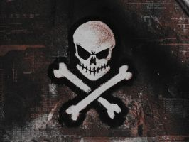 skull flag by darkdoomer