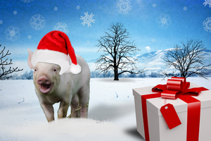 Merry Piggy Christmas!! by RMS-OLYMPIC