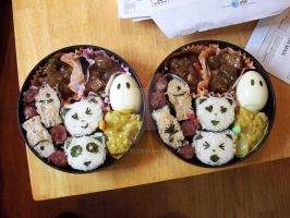 two bento box lunches by susanlin