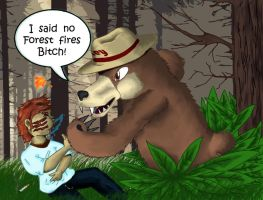 Angry Smokey the Bear. by TheMoonMonkey
