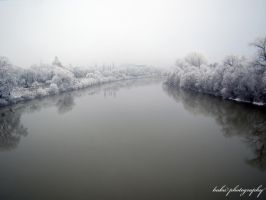 arad - mures river in winter by bogdanici