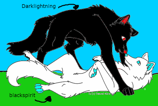 Wolf Couple 2 Part 2 by Darklightning001