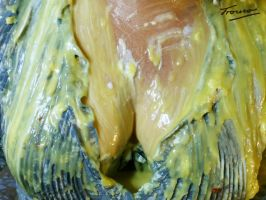 Custard Cleavage by Trouso