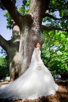 the bride's tree of life by ozcann