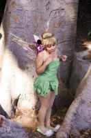 Tinkerbell : 03 by Lil-Kute-Dream