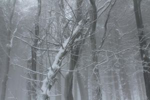 WinterScape by Chaottops