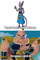 Nappa Ketchum Vs Lord Beerus Aka Bills by newsuperdannyzx