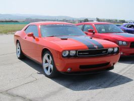 Striped Challenger by KateKannibal