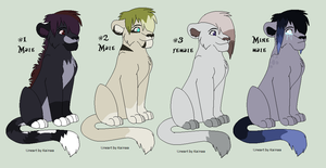 Lion Adopts by Amazing-Max