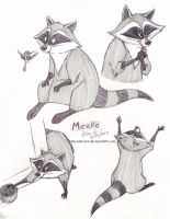 Meeko - Sketches by RavenEvert