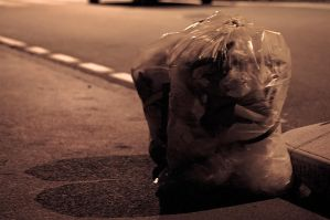 As a garbage bag by vallo29