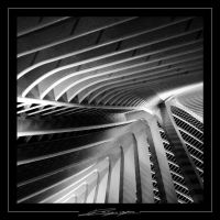 guillemins b w 2 by Bagou01