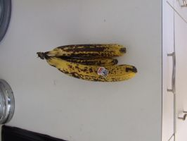 Bananas - ripe 1 by dtf-stock
