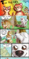 Two red cats - Strip 41 - Like cat and dog by FuriarossaAndMimma