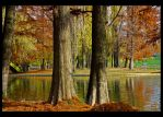 Autumn colors II by vxside