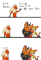 I'm a Blaziken by In-The-Machine