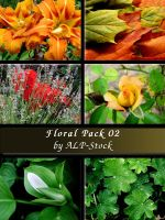 Floral Pack 02 by ALP-Stock